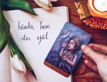 2019 hämta hem din själ - reaktionista.se