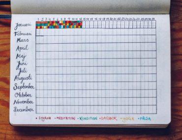 Habit tracker year in pixels Bullet Journal - reaktionista.se