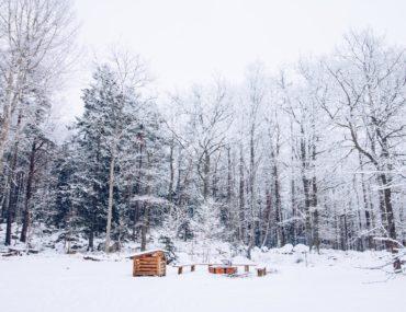 Vinterutflykt Kronskogen - reaktionista.se