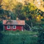 Blidö Stockholms skärgård stor - reaktionista.se
