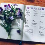 Bullet journal vecka 23 - reaktionista.se